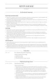 Senior Business Analyst Resume Samples Visualcv Rh Com Professional CV Format Examples Sales
