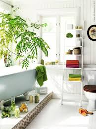 Plants In Bathroom According To Vastu by Feng Shui Plants For Harmony And Positive Energy In The Living