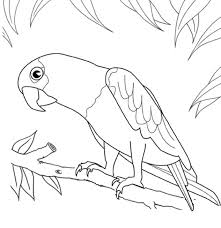 Cool Coloring Pages Printables Design Gallery