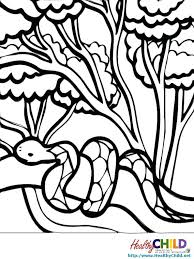 Full Image For Western Diamondback Rattlesnake Coloring Pages Rainforest Snake Printable Of
