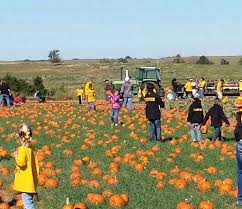 Pumpkin Patches In Oklahoma by Take A Visit To This Award Winning Corn Maze In Oklahoma