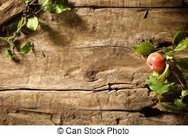 Autumn Apple On A Rustic Wood Background