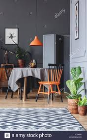 Dining Room Interior With A Table, Black And Orange Chairs, Plants ... Ding Table And Chairs In Style Of Pierre Chapo Orange Fniture 25 Colorful Rooms We Love From Hgtv Fans Color Palette Leather Serena Mid Century Modern Chair Set 2 Eight Chinese Room Ming For Sale At Armchairs Or Side Living Solid Oak Westfield Topfniturecouk Zharong Stool Backrest Coffee Lounge Thrghout Ppare Dennisbiltcom Midcentury Brown Beech By Annallja Praun Lumisource Curvo Bent Wood Walnut Dingaccent Ch Luxury With Walls Stock Image Chair Drexel Wallace Nutting Mahogany Shield Back