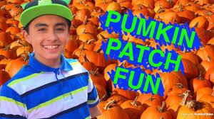 Santa Clarita Pumpkin Patch Festival by The Best Pumkin Patch And Corn Maze Tapia Brothers Pumpkin