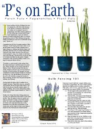 p s on earth porch pots paperwhites and plant pals s