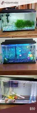 Best 25+ Fish Tank For Sale Ideas On Pinterest | Pretty Fish ... I Really Want A Jellyfish Aquarium Home Pinterest Awesome Fish Tank Idea Cool Ideas 6741 The Top 10 Hotel Aquariums Photos Huffpost Diy Barconsole Table Mac Marlborough Tank Stand Alex Gives Up Amusing Experiments 18 Best Fish Images On Aquarium Ideas Diy Clear For Life Hexagon Hayneedle Bar Custom Tanks Ponds Designs For Freshwater Modern 364 And Tropical Ov Cylinder 2