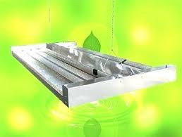 t5 fluorescent grow lights grow lights t5 ho grow light home depot