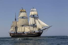 pauline s pirates privateers horror on the high seas the