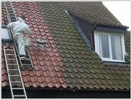 how to paint concrete roof tiles best image voixmag