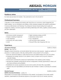 View Resume ECommerce Manager
