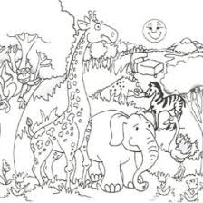 Coloring Pages Free Of Animals And Their Homes