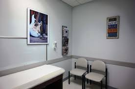 Our Office | Kennesaw Pediatrics Teen Center Pediapals Pediatric Medical Equipment Supplies Exam Tables Dental World Office Fniture Grp Waiting Area Chair Buy Steel Bench Salon Airport Reception 2 Seat Childrens Hospital Room Stock Photo 52621679 Alamy Oasis At Monash Chairs Home Decor Ideas Editorialinkus Procedure Gynecology Exam Medical Healthcare Solutions Steelcase Child And Family Hub Thornhill Clinic Studio Four Architects What Its Like To Be A Young Adult Getting Started Therapy Partners
