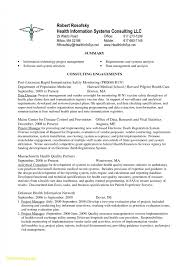 Information Technology Manager Resume Examples 2016 Project Pdf New Scheduler Sample Leader Sidemcicek