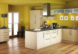 Kitchen Amazing Of Paint Colors Ideas Wall Color With White