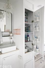 Tiny Home And RV Bathroom Organization - Tidbits 51 Best Small Bathroom Storage Designs Ideas For 2019 Units Cool Wall Decor Sink Counter Sizes Vanity Diy Cabinet Organizer And Vessel 78 Brilliant Organization Design Listicle 17 Over The Toilet Decorating Unique Spaces Very 27 Ikea Youtube Couches And Cupcakes Inspiration Cabinets Mirrors Appealing With 31 Magnificent Solutions That Everyone Should