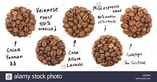 Collection Of Roasted Coffee Beans Name Coffees