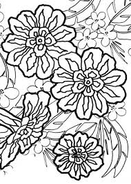 Carnation Flower Bouquet Colouring Page Coloring