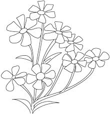 Small Babys Breath Flower Page