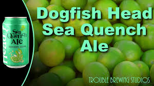 Dogfish Pumpkin Ale 2017 by Dogfish Head Seaquench Ale Beer Bros Get Citrusy Part 3 Youtube
