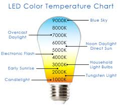 everything you need to about led lights wholesale