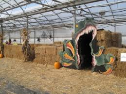 Dills Pumpkin Patch Columbus Ohio by Dill U0027s Greenhouse Fall Fun Festival Oh Ohio Find It Here