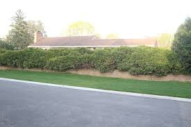 Century Tile Mundelein Mundelein Il by 797 Lomond Drive Mundelein Il Single Family Home Property