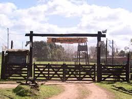 Rustic Driveway Gate