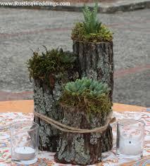 Rustic Succulent Plant Holder