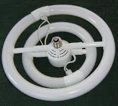 light bulbs modern fluorescent circline bulb design inspiration