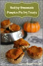 Turkey And Pumpkin For Dog Diarrhea by Dog Treat Recipes For Thanksgiving