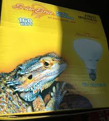 best uvb all in one bulb for bearded chameleon forums