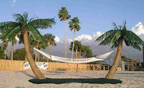 The Original Palm Island Hammock Stand Swings N Things