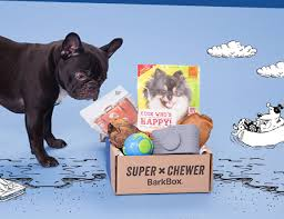 Very BarkBox Is Loaded With Toys And Healthy Treats. Get ... Bark Box Coupons Arc Village Thrift Store Barkbox Ebarkshop Groupon 2014 Related Keywords Suggestions The Newly Leaked Secrets To Coupon Uncovered Barkbox That Touch Of Pit Shop Big Dees Tack Coupon Codes Coupons Mma Warehouse Barkbox Promo Codes Podcast 1 Online Sales For November 2019 Supersized 90s Throwback Electronic Dog Toy Bundle Cyber Monday Deal First Box For 5 Msa