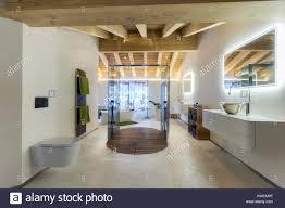 luxuriöses badezimmer mit dusche und decke aus holz