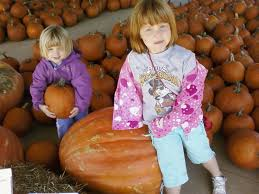 Pumpkin Patch Farms Mississippi by Kinsey Farm Forsyth For Families