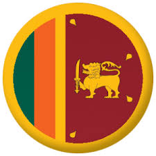 Sri Lanka Country Flag 25mm Pin Button Badge