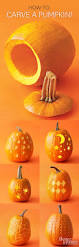 Owl Pumpkin Carving Templates Easy by Free Pumpkin Stencils For Halloween