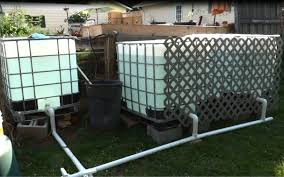 Outdoor Tilapia Aquaponics Setup Easy And Cheap Part 1 YouTube
