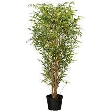 kunstpflanzen kaufen bis 50 rabatt möbel 24