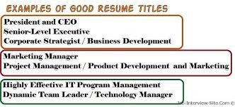 Resume Title Examples Of Titles