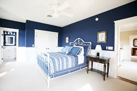 Traditional Bedroom Idea In Other With Blue Walls
