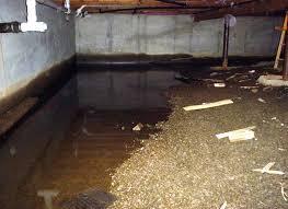 Floor Joist Jack Crawl Space by Crawl Space Waterproofing U2013 Crawl Space Kings