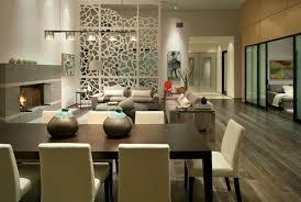 Beautiful Divider Ornate Home Decorating Ideas Living Room Design