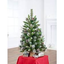 4 Ft Pre Lit Christmas Tree Asda by 37 Best Plantas Images On Pinterest Plants Flower Arrangements