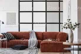 graue decke und schwarze kissen auf elegantem samtecksofa stockfoto und mehr bilder abstrakt