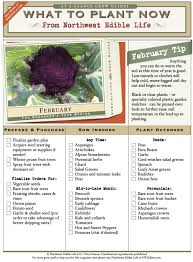 What To Plant February