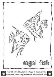 Tropical Angel Fish Coloring Page Free Print Out Pages Lucy LearnsAngel