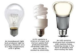 what of light bulbs you use in your home