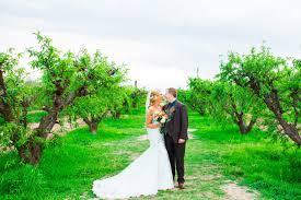 Schnepf Farms Halloween by A M Schnepf Farms Wedding In Queen Creek Phoenix Wedding
