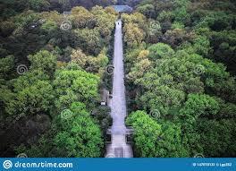 100 Birdview From Linggu Pagoda In Nanking Stock Image Image